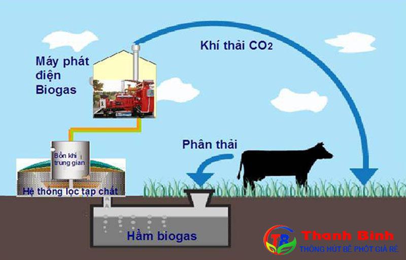 Khí Biogas là gì và có độc không?