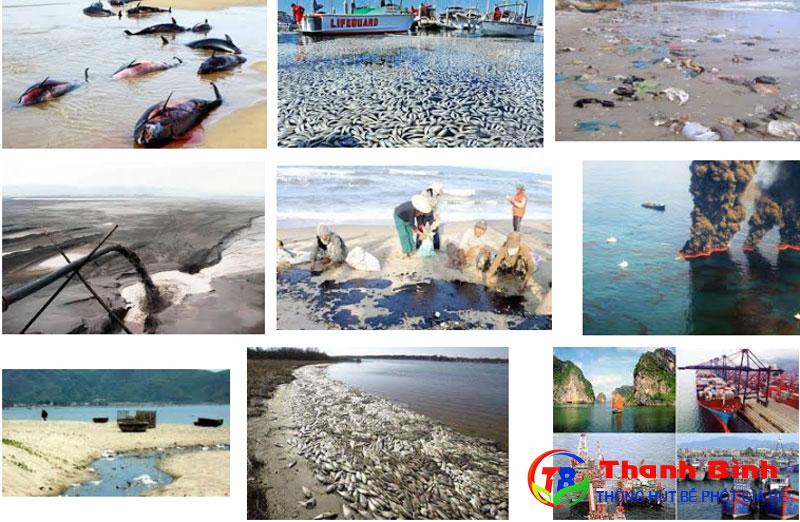 Các nguyên nhân gây ô nhiễm môi trường biển chủ yếu