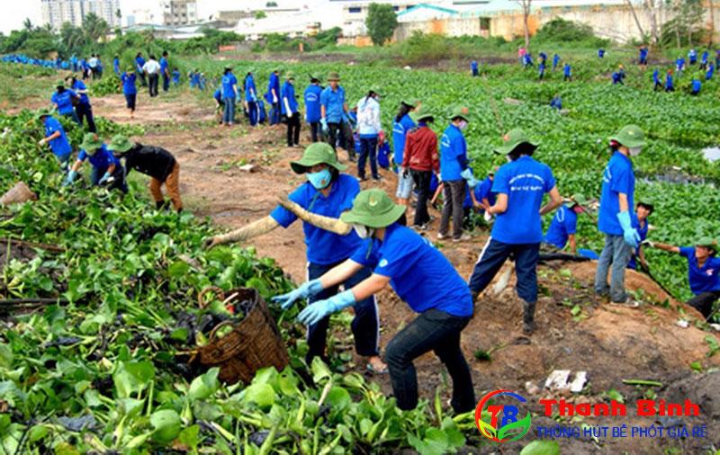 Sinh viên hăng hái tham gia các hoạt động bảo vệ môi trường